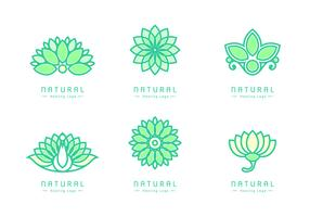 Natural Healing Logos Vector
