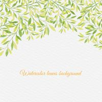 Vectorwaterverfachtergrond met Hand Draw Leaves