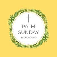 Plano de fundo do vetor de palmeiras de domingo