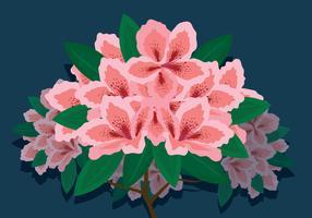Azalea Flowers Vector Illustration