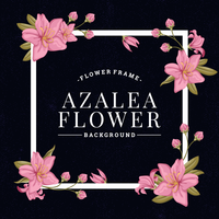 Fundo de flores de azaléia