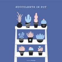 Succulents In Pot Vector Set