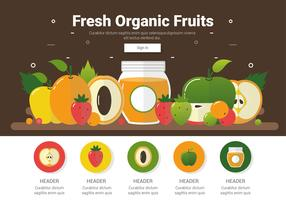Vector de frutas orgánicas frescas