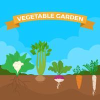 Ilustración plana del vector del jardín vegetal