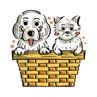 puppy and kitten in the box vector