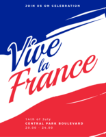 vive la france affiche vecteur