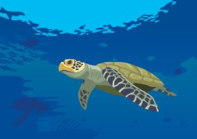 Turtles At The Sea vector