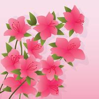 Azalea Flowers Illustration