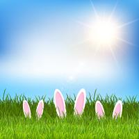 Orejas de conejo de Pascua escondidas en la hierba