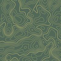 ligne carte topographique contour élévation fond