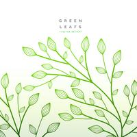 green leaves floral decoration. nature illustration