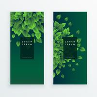 conjunto de dois banners de natureza fundo