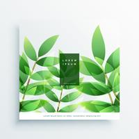 green leaves vector nature background card