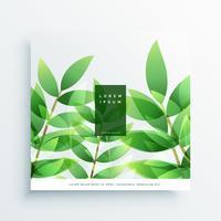 folhas verdes vector fundo natureza cartão