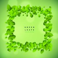 green background with leaf frame vector