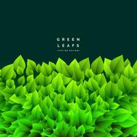 tas de feuilles vertes eco nature fond