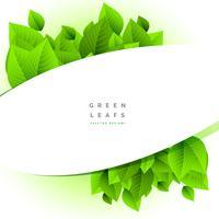 fundo de natureza com ilustração de folhas verdes