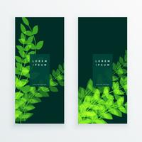 cartão da bandeira do verticle da natureza da folha