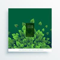 grön natur vektor kort omslagsdesign med löv