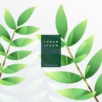 Ilustración de fondo de hoja verde elegante vector