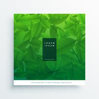 green leaves card design background