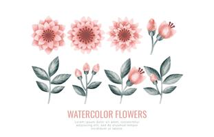 Vector Watercolor Flowers and Branches
