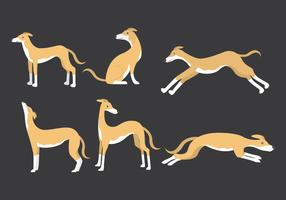 Whippet Flat Icons