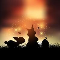 Osterhasen bei Sonnenuntergang