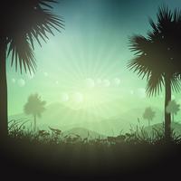 Palmträd landskap