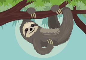 Sloth Vector Illustration