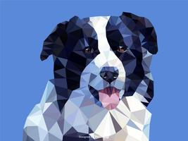 Abstract Border Collie Dog Portrait In Low Poly Vector Design