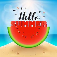 Hello summer lettering on watermelon sliced vector