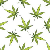 Cannabis vector pattern.
