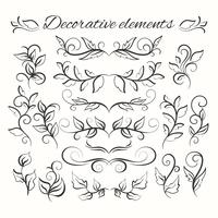 Hand drawn divders set. Ornamental decorative elements. Floral set. vector