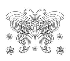 Butterfly Coloring Book For Adult