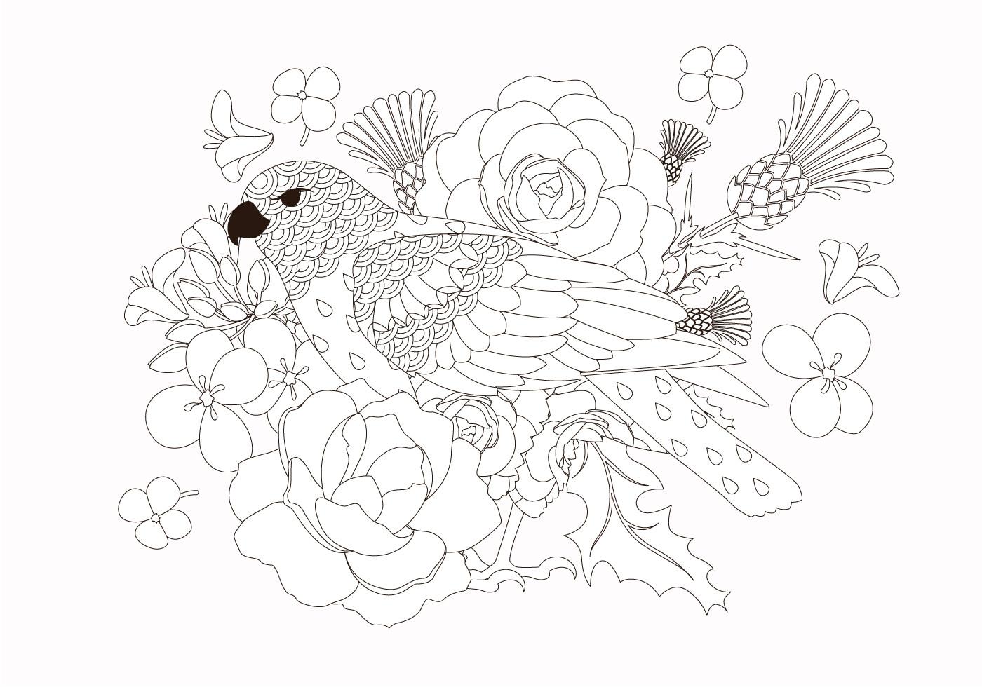 Coloring Book Bird Animal Vector Download Free Vectors Clipart Graphics Vector Art