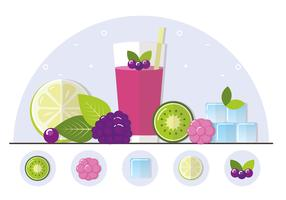 Vector Fruit Smoothie Illustration