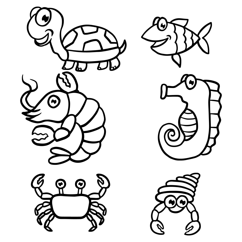 Animais De Livro Para Colorir Download Vetores Gratis Desenhos