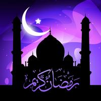 stylish ramadan kareem vector