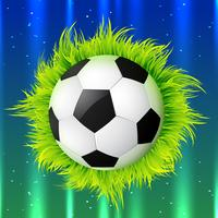 fotboll med gräs