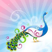 artistic vector peacock