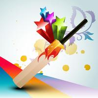 batte de cricket