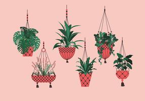 Potted Plant Hanging Vector