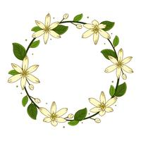 Wreath Jasmine Flower Background Illustration