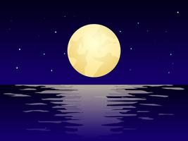 Beautiful Night Time Beach Vectors