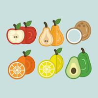 Vector Colorful Fruits
