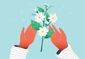 White Gorgeous Jasmine Flower On Hands Vector Flat Illustration