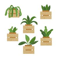 Vector de pared de plantas en macetas