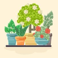 vector coloful plantas