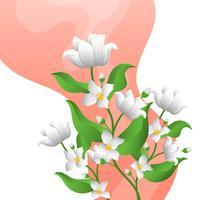 Flache Jasmin-Blume mit Steigungs-Hintergrund-Schablonen-Vektor